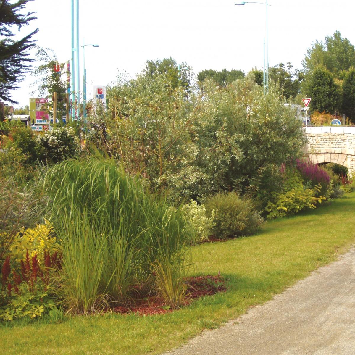 Aménagement d'espace rustique - Gestion différenciée à Saint-Jean-de-Monts