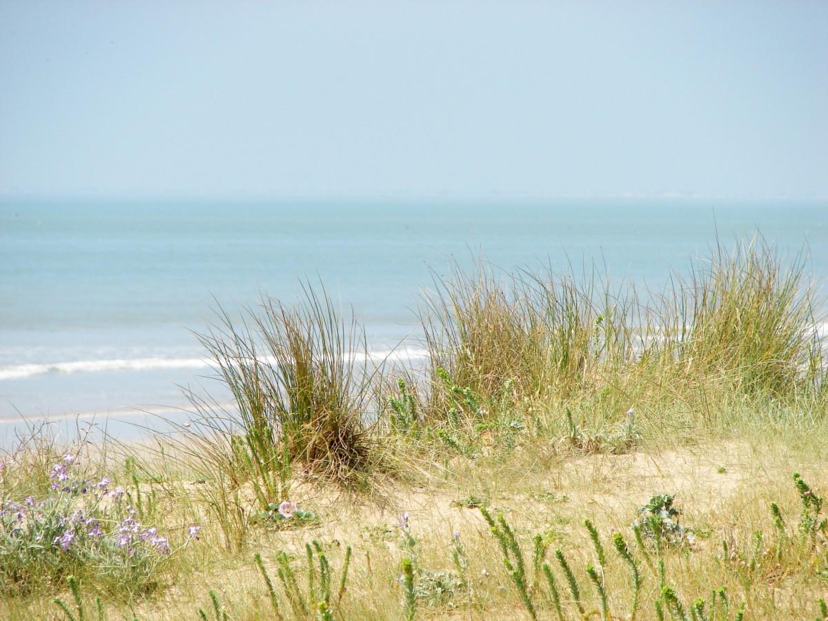 dune blanche saint jean de monts
