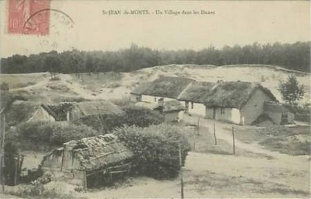 Histoire de le fixation des dunes de Saint-Jean-de-Monts