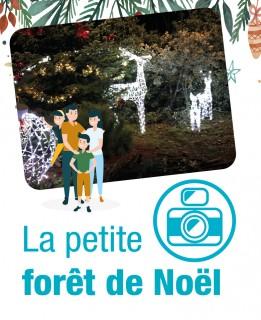 actu-foret-noel2021-8851