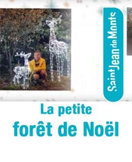foretnoel-actupetit-8944