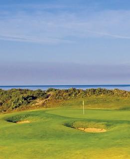 golf-8711
