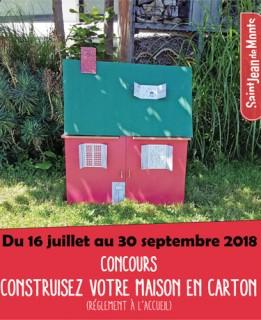 maison-carton-actupetit-6860
