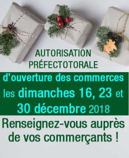 ouverture-commerces-2018-actu-7387