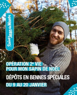 recyclage-sapin-8910