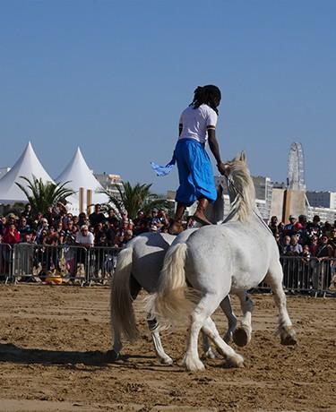 caval-2-9446