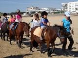 balade-poneys-copier-57862