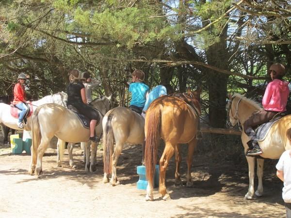 Break Ados - Equitation